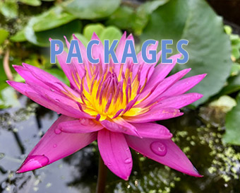 Spa Massage Packages Van Nuys